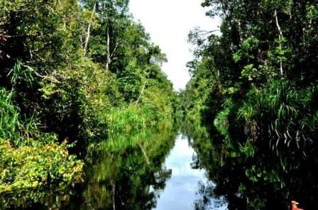 Tempat Terindah di Daerah Kalimantan Tengah