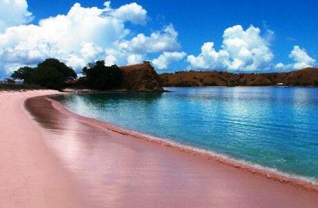 Pink Beach Tempat Wisata di Nusa Tenggara Timur
